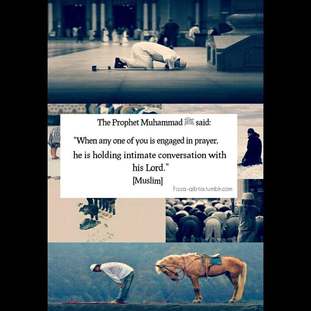 10 Islamic Quotes  |Amazing Islamic Quotes